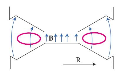 Fig. 4: Tverrsnitt av betatron torus (rosa) anbrakt mellom polene til en for formålet spesielt utformet magnet