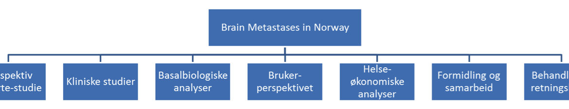 Figur 1. Oversikt over prosjektet «Brain Metastases in Norway – Improved Classification and Treatment» med delprosjekter