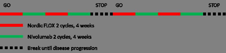 Figur 2. Den eksperimentelle studiearma. Studiepasientane vil få repetert sekvensiell behandling med FLOX og nivolumab. Ein full behandlingssekvens på 16 veker ('go') er samansett av to FLOX-kurar etterfølgt av to kurar nivolumab, som dernest blir repetert før behandlingspause ('stop'). Pausen er diktert av behandlinga i kontrollarma, som tilsvarande vil bestå av åtte FLOX-kurar. Dette er relativt toksisk, og dei fleste pasientar vil trenge eit opphald etter åtte kurar. I begge studiearmar startar behandling opp att ved sjukdomsprogresjon i pausen ('go') og held fram til sjukdomsprogresjon (eller uakseptabel toksisitet) under aktiv behandling, som definerer det primære endepunktet, progresjonsfri overleving.