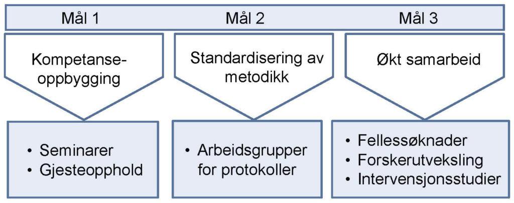 Figur 3. Nettverksmål og virkemiddel