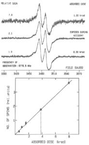 Figur 5: ESR spektrum av bestrålt Nitroglyserin A-L tabletter observert tre uker etter uhellet (øverst). Kalibreringskurven som angir antall radikaler som funksjon av dose er angitt under (11).