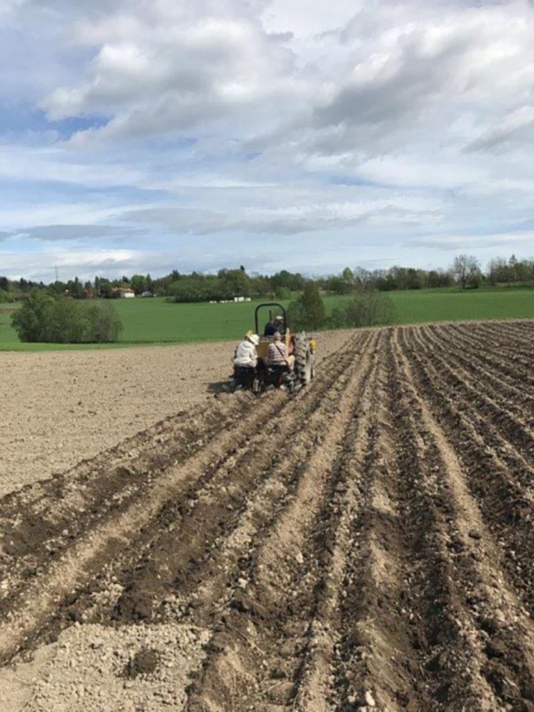Jordbruk: Landjorda skal fortsette å dekke mange ulike behov fremover, men jordbruk og matproduksjon er viktige kilder til klimagassutslipp. Foto: Hege Fantoft Andreassen